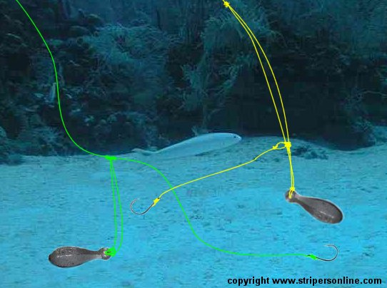 Two blackfish rigs side by side uncategorized surftalk for Tautog fishing rigs