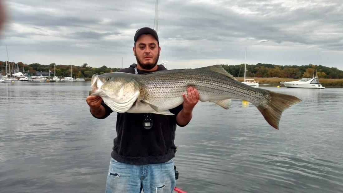 North shore report page 293 massachusetts fishing for North shore fishing report
