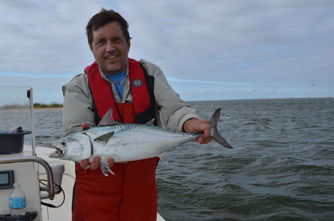 Harker 39 s island trip fly fishing surftalk for Harkers island fishing report