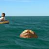 Surffishinfiend