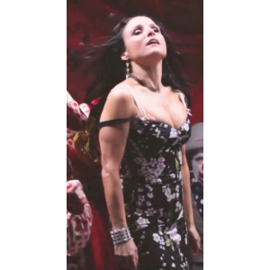 2Julia_Louis-Dreyfus_Big_Boobs.png