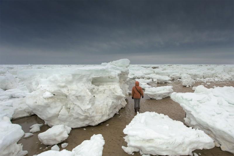 big-ice-in-cape-cod.jpg
