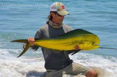 Dorado caught on fly gear from shore!