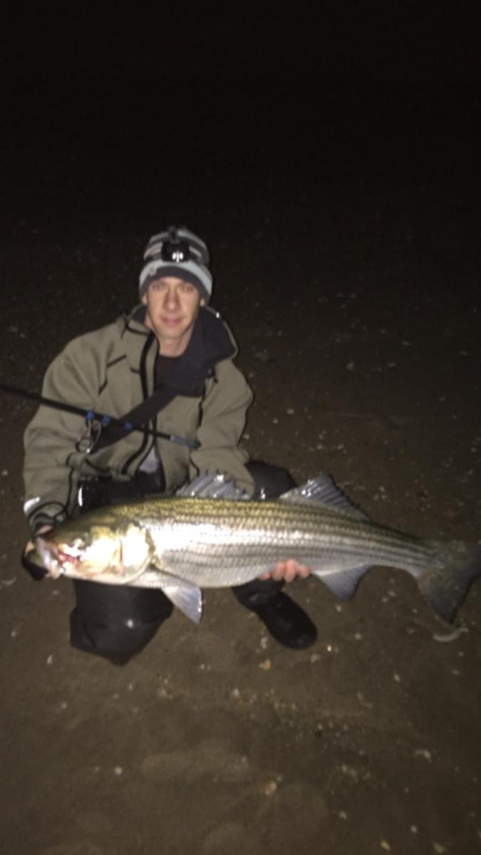 Fishing Reports in NJ,  November 2014