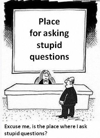 Stupid questions mmm.jpg