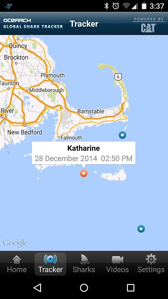 Katharine.jpg