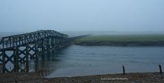 Random Cape Cod Images...
