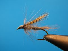 Dark Hendrickson winged wet fly Steve Culton