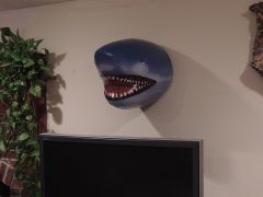 Lets see those fish Mounts!!