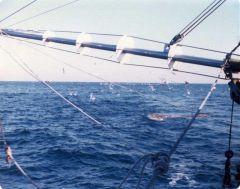 vbattach200129