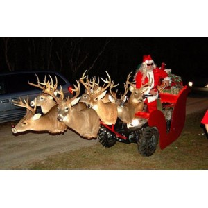 redneck christmas float.jpg