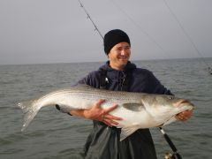 Whats the biggest striper ever caught by someone in the forum?