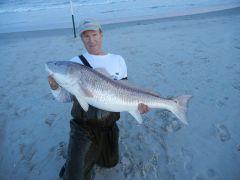 Delmarva Fishin' Reports; September