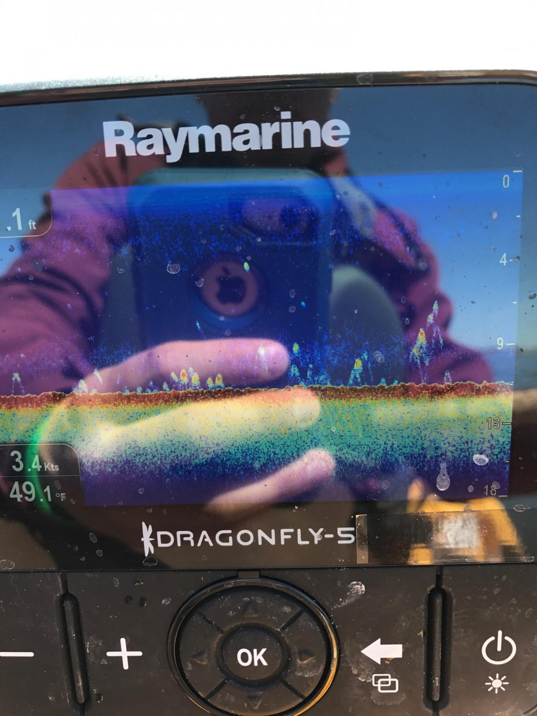 Raymarine Dragonfly help    - Kayaking and Kayak Fishing