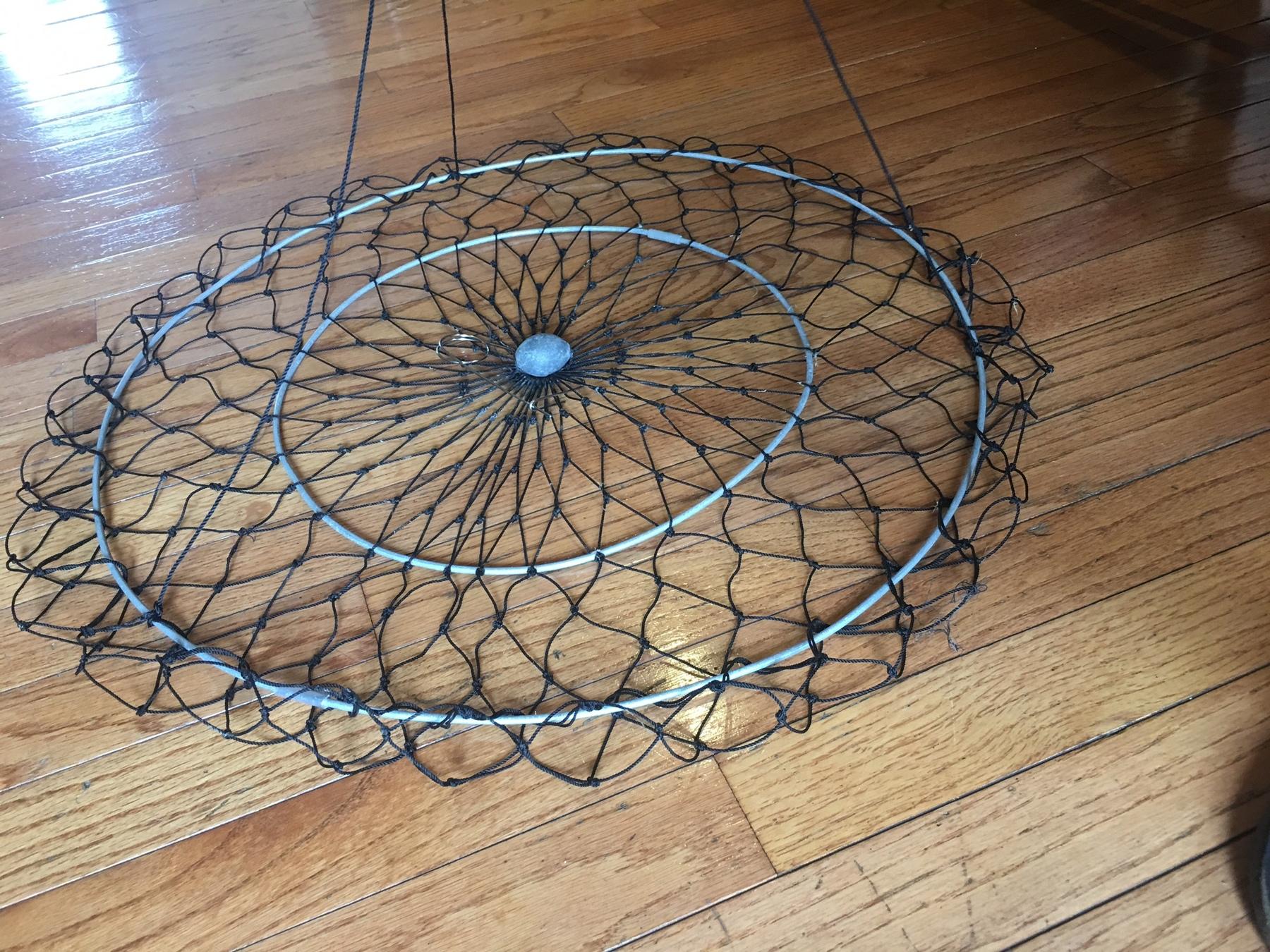 Ring trap 3.jpg