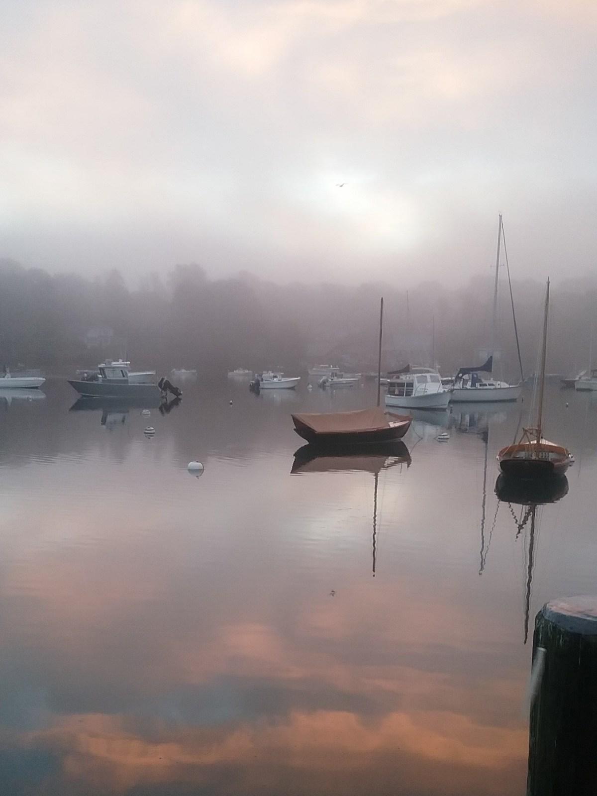Foggy harbor.jpg