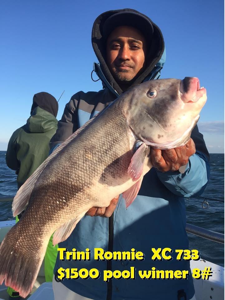 ronnie 11-22-17 sound bound.jpg
