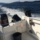 island fish lifter