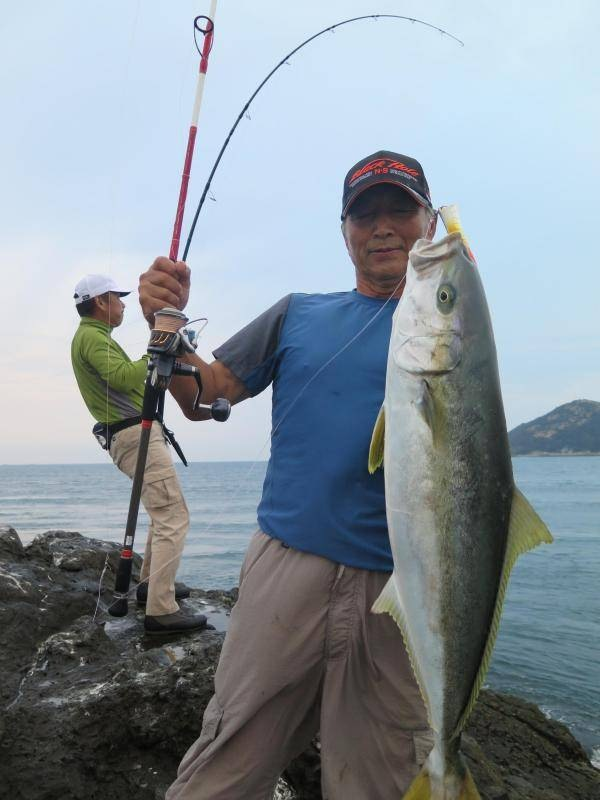 magicyeye752yellowtail.jpg