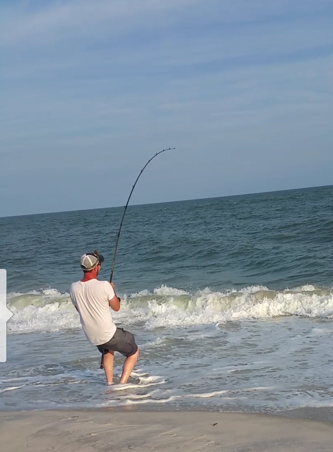 Which Of These Rods For Small Medium Sharks From Surf Main Forum Surftalk