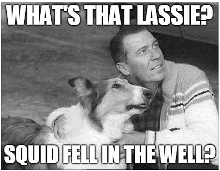 lassie.png.8eac65e71ed192d5ea58c5eaabba2451.png