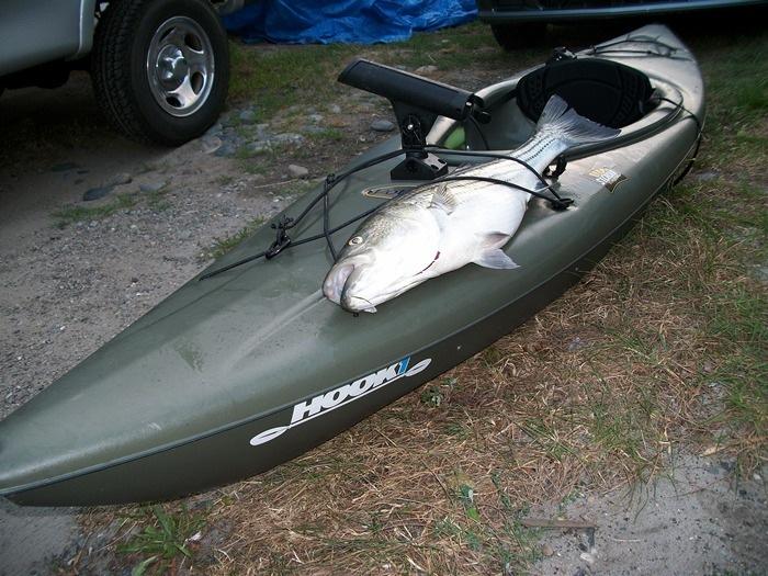 100 dollar kayak.jpg