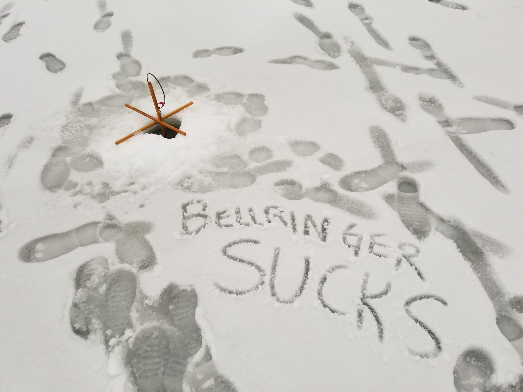 BellringerSucks.jpg