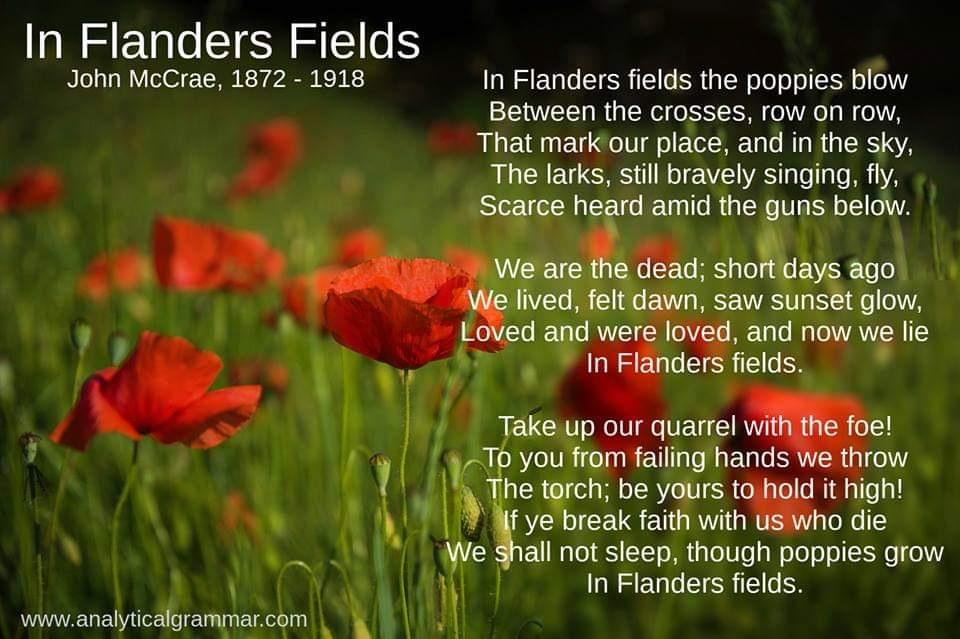 Flanders Fields.jpg