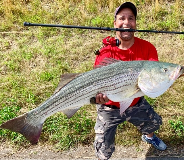 stripedbass28rod41lb.jpg