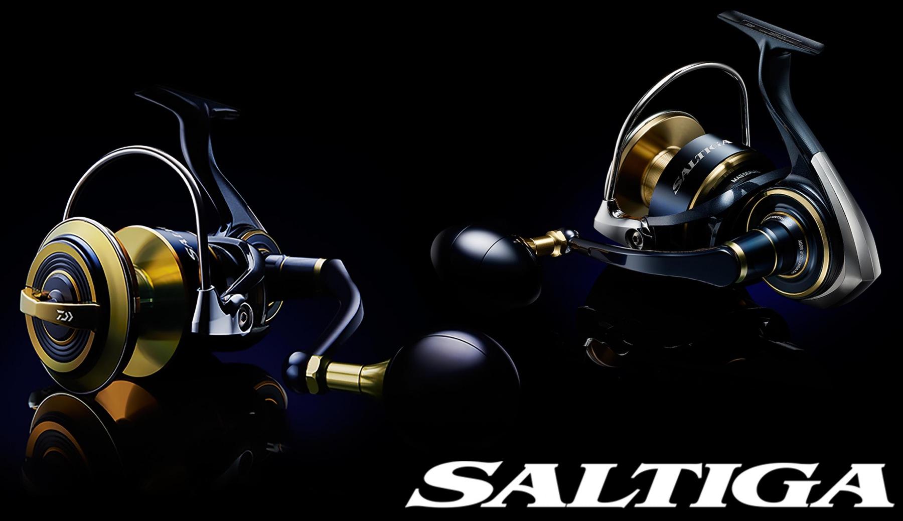 saltiga13.jpg
