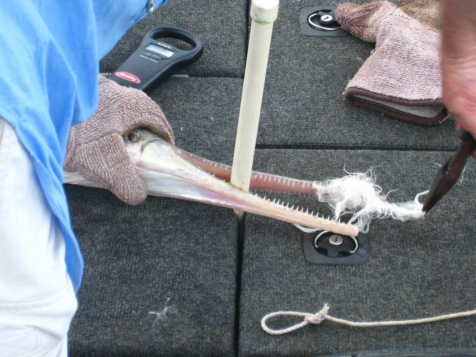 18lbs-1oz 53.5 inches 5-18-10 Nylon Rope Lure.jpg