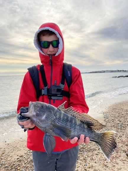 Black Sea Bass 1.JPG