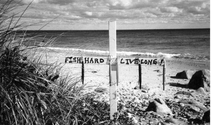 Fish Hard Live Long.jpg