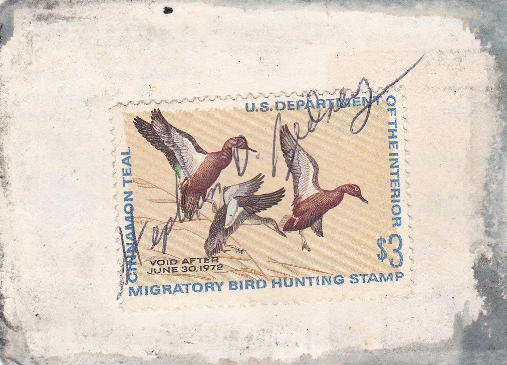 1971 Duck Stamp.jpg