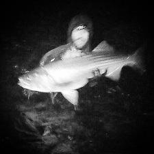Rockfish666