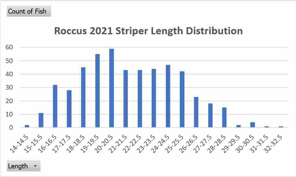 2021 bass size distribution.jpg