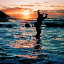 Hobie Outback VS Hobie Pro Angler - Kayaking and Kayak