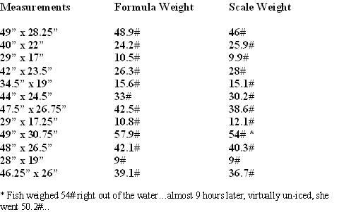 weight3.JPG